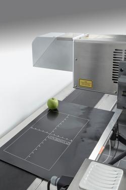 Codeur laser CSL30 sur ligne de production
